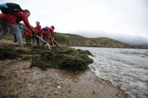 "Baikal without Spirogyra: the Results of the ""Baikal Expedition"""